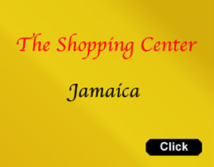 Jamaica Shopping Center &amp; Map | shops shopping jamaica queens ny